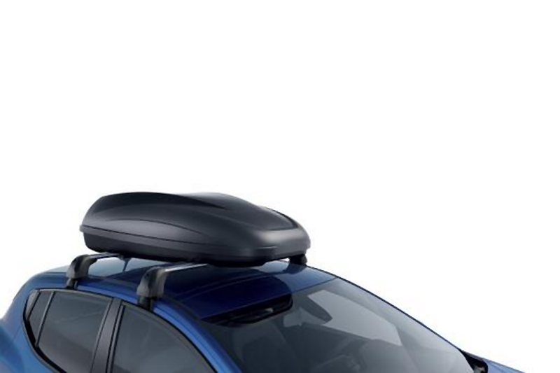Dachbox Dacia